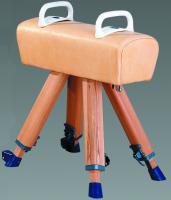 Mini-Pferd 90-130cm