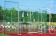 Schutzgitter freistehend (für Nebenplätze) ein Netz, ohne Frontklappen